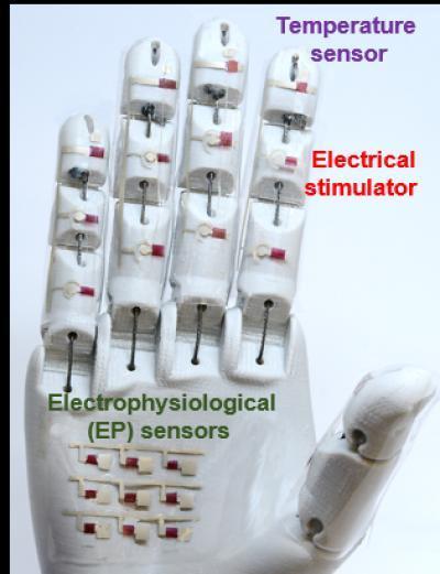 mano robótica para uso en medicina