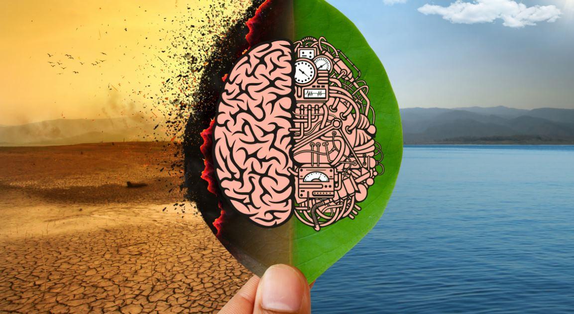 Cómo la inteligencia Artificial ayuda en la crisis climática mundial