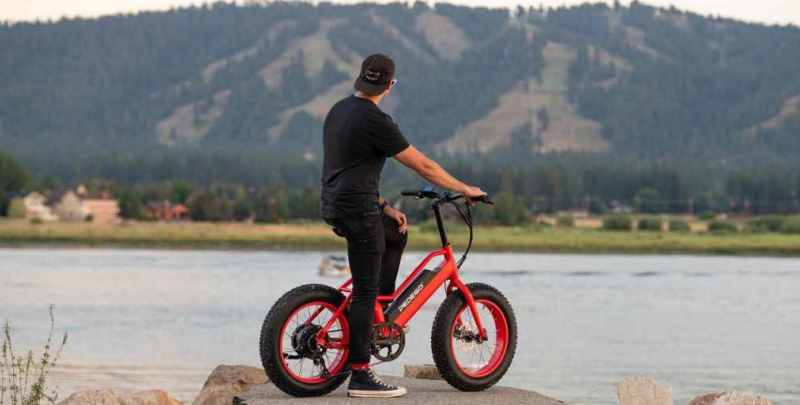 fat bike electrica pedego element