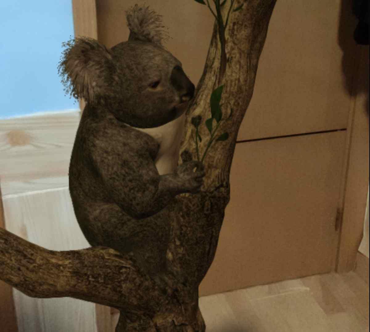 Ya podemos conocer ocho animales australianos con la Realidad Aumentada de Google