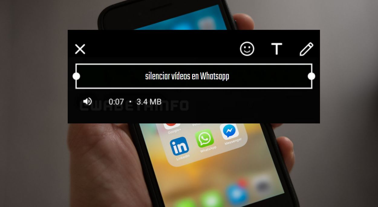 vídeos whatsapp