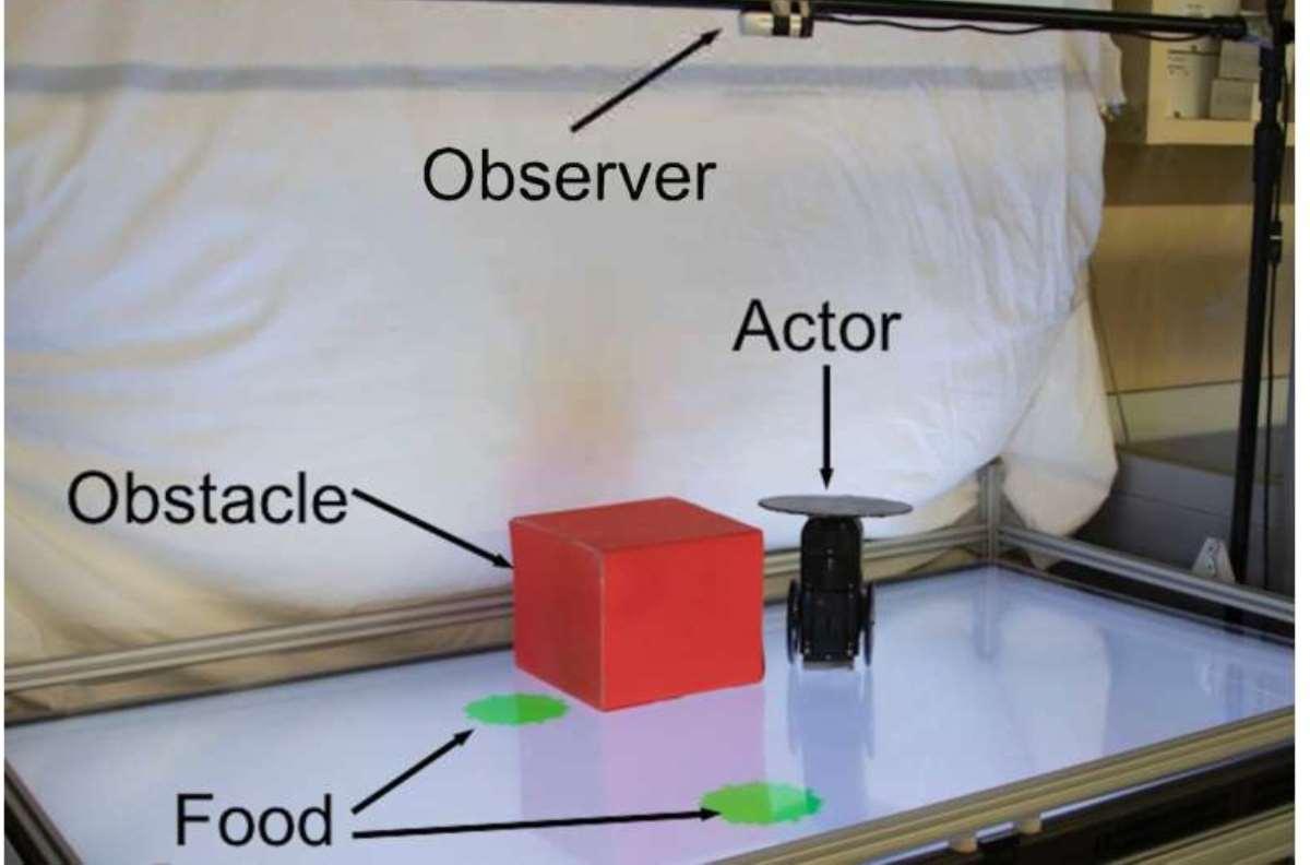 Crean robot que predice los movimientos de robot compañero.