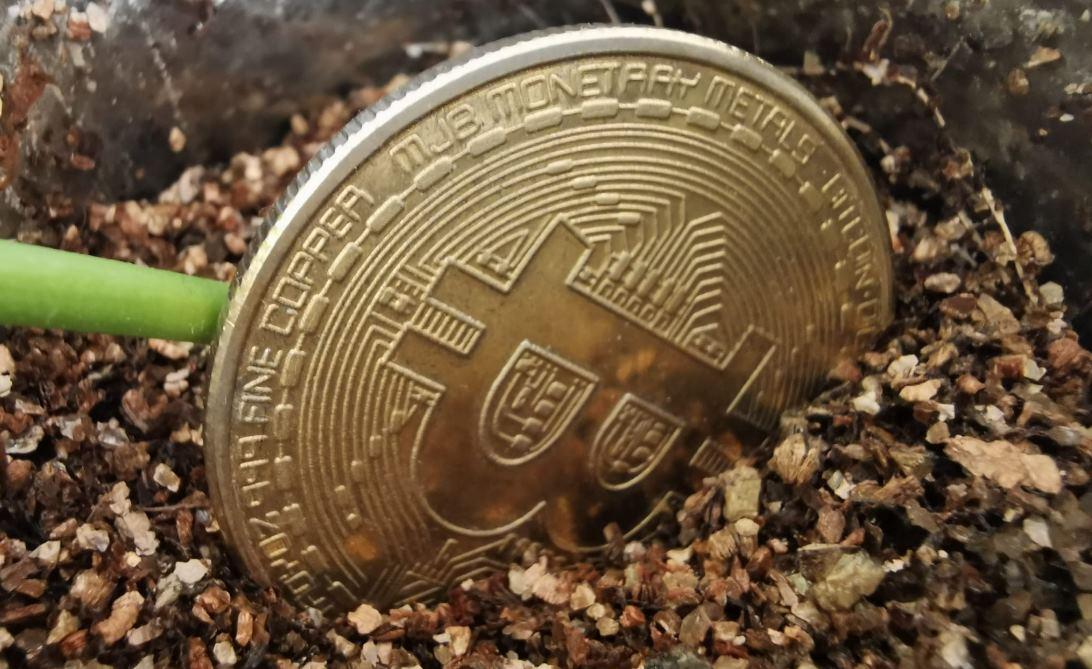 Se pueden recuperar parte de los Bitcoins perdidos en Mt. Gox