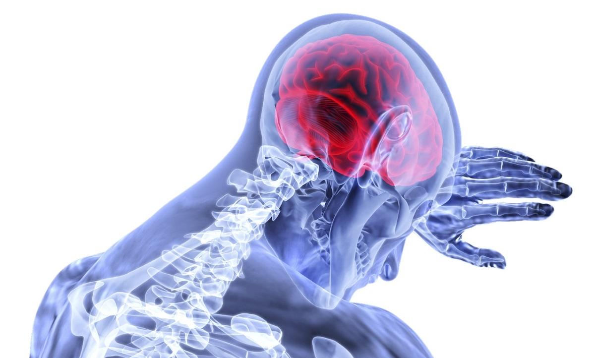 La vacuna para el cáncer de cerebro, estamos mucho más cerca