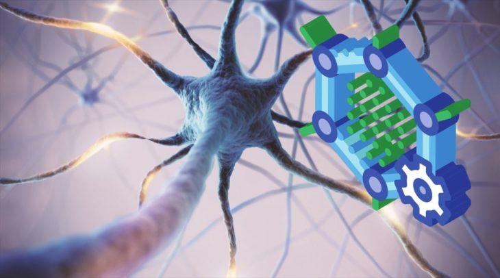 grafeno cerebro