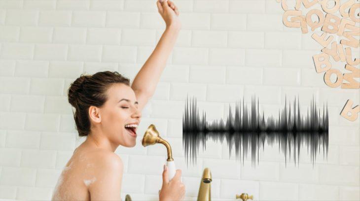 separar_audio_voz