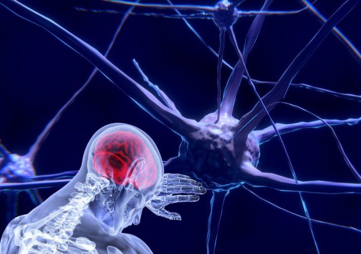 Cofundador de Neuralink abrirá su propia empresa de neurociencia