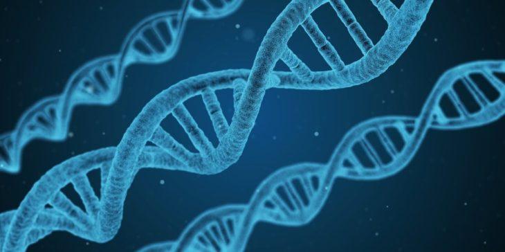 Empresa crea máquina para realizar experimentos con el ADN